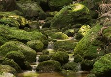 Water flowing over rounded stones, Jedlova,Czech republic. Water flowing over rounded green stones covered with moss in small mountain river Royalty Free Stock Images