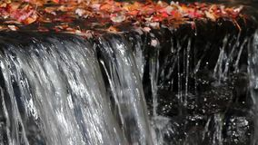 Water flowing over small dam stock video