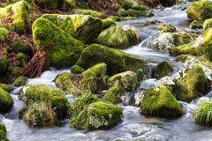 Water flowing over stones. near base of waterfall winter. Stock Images