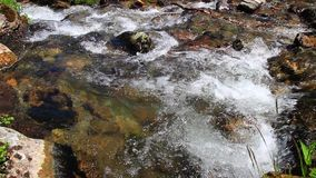 Water flowing in a stream. Water flowing in a Pyrenean stream, France stock video footage