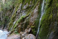 Water flowing on rock Royalty Free Stock Photography