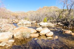 Sabino Creek lined with rocks. The water flowing through the rocks and trees in Sabino Creek in Tucon, Arizona Stock Images