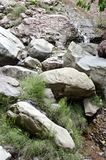 Water flowing through a rocky stream Stock Photography