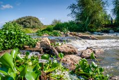 Water is flowing and splashing in river. Aldeia do peixe, Benavente, in Portugal stock photos