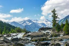 Water noise. Water flowing among the stones and trees on the background of snow-capped peaks Royalty Free Stock Photos