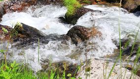 Water flowing in a stream. Water flowing in a Pyrenean stream, France stock video