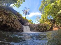 Water flowing into swimming hole at Togitogiga Waterfall on Upolu Island, Samoa, South Pacific. Lush tropical foliage and trees stock images