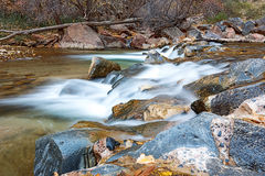 Water flowing through the Virgin river in Zion National Park in USA Royalty Free Stock Images