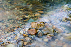 The water flows Royalty Free Stock Images