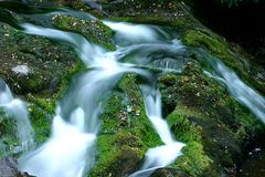 Water Flows. Water Flowing over rocks. Great Smoky Mountains National Park stock images