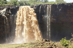 Water flows of Blue Nile falls Royalty Free Stock Photography