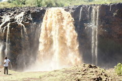 Water flows of Blue Nile falls Royalty Free Stock Photos