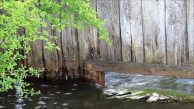 Water flows in the creek. Under a wooden wall stock video