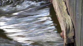 Water flows in the creek under a wooden wall stock video