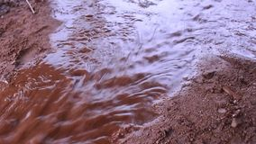 Water flows on the ground. After rain stock video