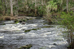 Water flows in Hillsborough river Stock Photo