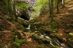 Water flows out of the Cioclovina cave Stock Image