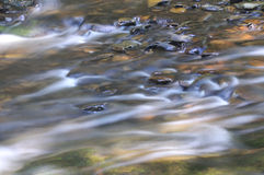 Water flows over many rocks and stones Royalty Free Stock Images