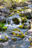 Water flows over rocks in a creek Royalty Free Stock Images