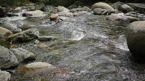 Water flows over stones in a mountain river. The bubbling water in a mountain river stock video