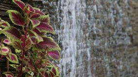 Water flows through stone wall Royalty Free Stock Image