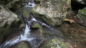 Water flows between stones in wild nature stock video footage