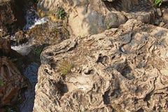 Water flows through textured rocks Stock Photos