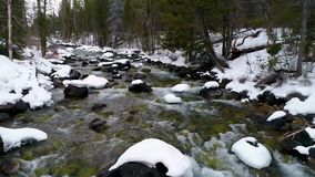 Water flows in winter down Redfish creek in Idaho. Snow on the banks of a river in winter that flows through a forest in Idaho stock video