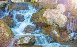 Water in the forest by techer exactly vytochennym rocks, beautiful little waterfalls in the forest. Taiga Stock Image