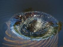 Water forms a vortex. South Bohemia stock photo