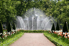 Water fountain. In st Petersburg, russia stock photos