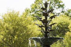 Water Fountain in Austin, TX. Water splashing from a vertical fountain with trees and bushes in the background Royalty Free Stock Photography