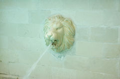 Water fountain. The head of a lion-shaped water fountain Royalty Free Stock Images