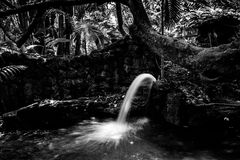 Water fountain, Pinecrest Gardens, Miami, Florida, USA. Water fountain with silky flow effect in black and white in Pinecrest Gardens in Miami, FL, USA Stock Photo
