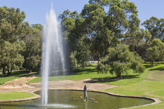 Water Fountain in Pond at  Kings Park Perth Western Australia Stock Image