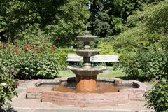 Water fountain in rose garden Stock Photos