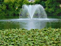 Water Fountain. Spraying water in middle of pond; Millville, Cumberland County, New Jersey royalty free stock photos