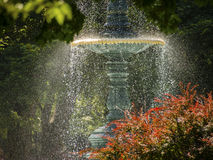 Water Fountain in Sun Light Stock Photos