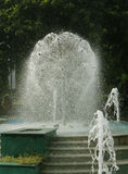Water  fountains Stock Photos