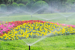Water the garden. With spray, spring garden Royalty Free Stock Photography
