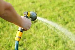 Water garden Stock Images