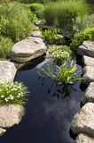 Water Garden. Japanese Water Garden with rocks and plants Stock Photography
