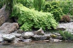 Water garden Royalty Free Stock Image