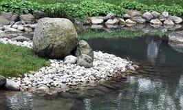 Water garden as a living part of the garden Royalty Free Stock Photo