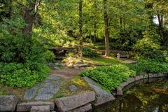 Water garden stock image