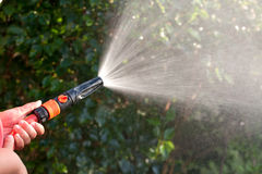 Water from a garden hose. Water spraying from a garden hose in hand royalty free stock photo