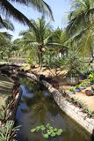 Water garden at a hotel in Vietnam. Water garden and canal at a Vietnam hotel resort Royalty Free Stock Photography