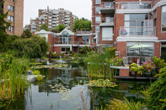 Water garden at housing complex, Victoria, Canada Royalty Free Stock Photo