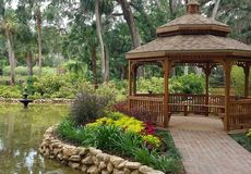 Water garden royalty free stock photography