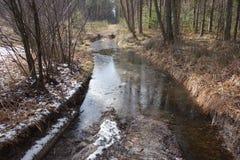 Water gegeven manier in het bos Royalty-vrije Stock Afbeeldingen